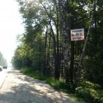 Дорога в Тураево
