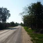 Дорога к д. Верхнее Мячково