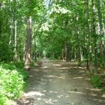 Парк в Лыткарино