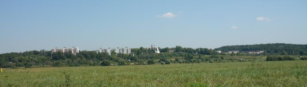 Вид Петровского с берега Москва-реки