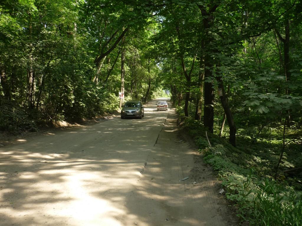 Пьяная дорога в Петровском