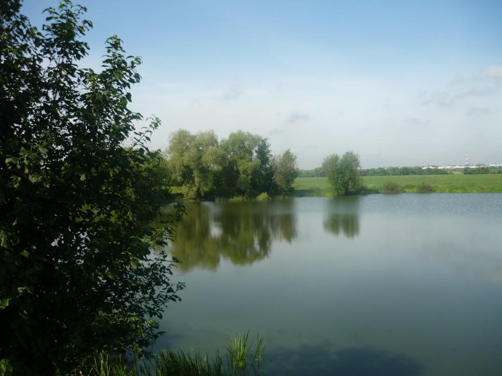 Озеро Круглое у Лыткарино