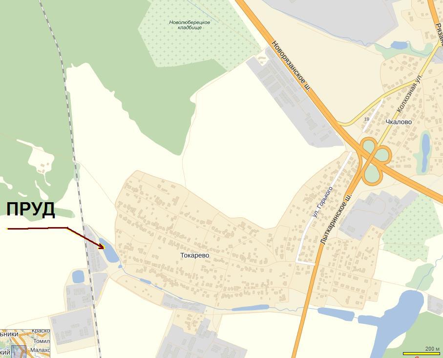 Пруд в Токарево на карте