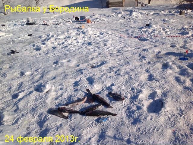 Рыбалка у Бородина 24-02-13