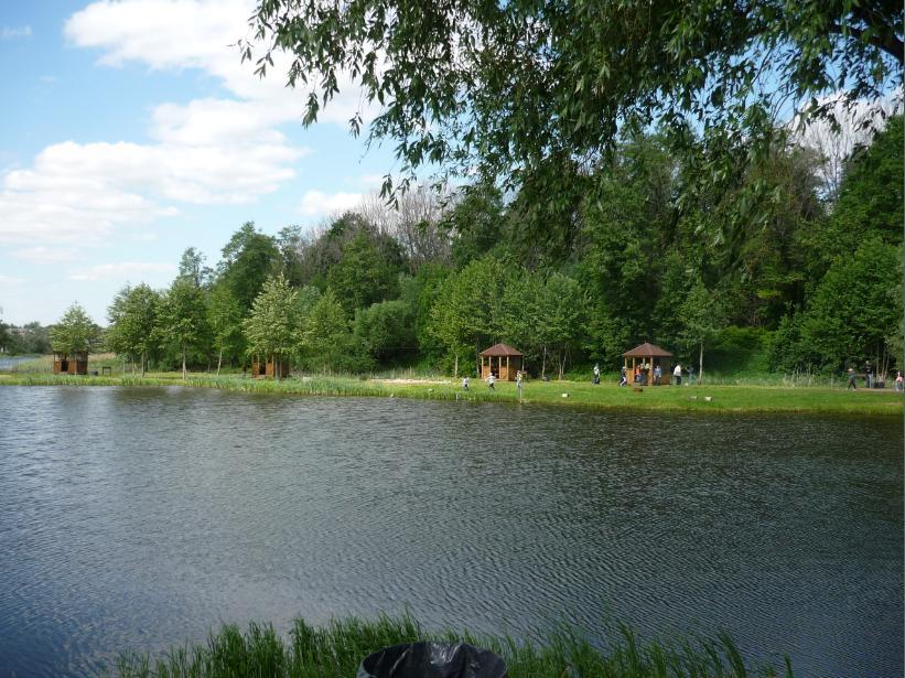 Быковка - Вид пруда
