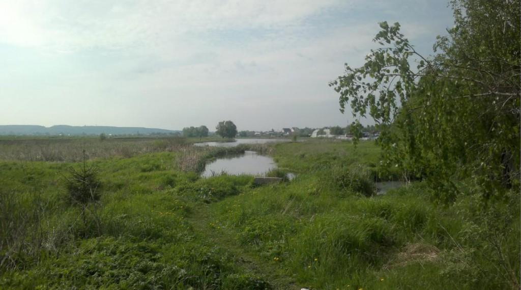 Озеро в Островцах