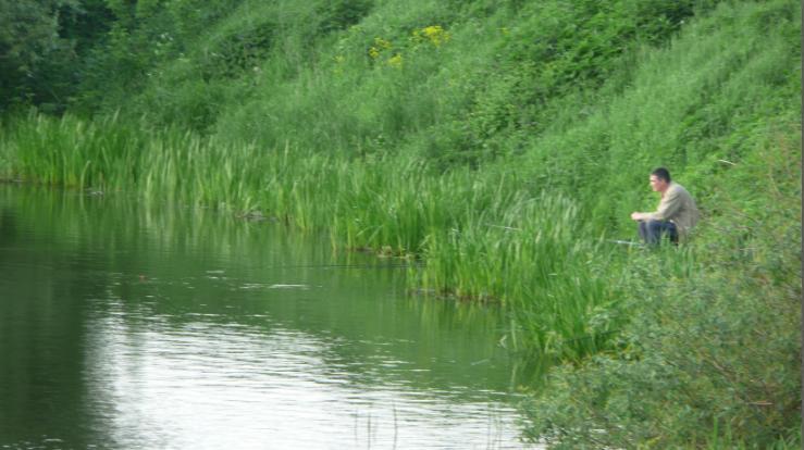 Рыбак на озере Круглое. Бесплатная рыбалка в Подмосковье