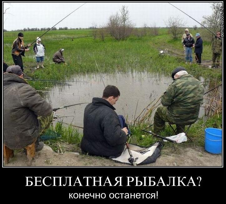 фион форум рыбаков волгодонск