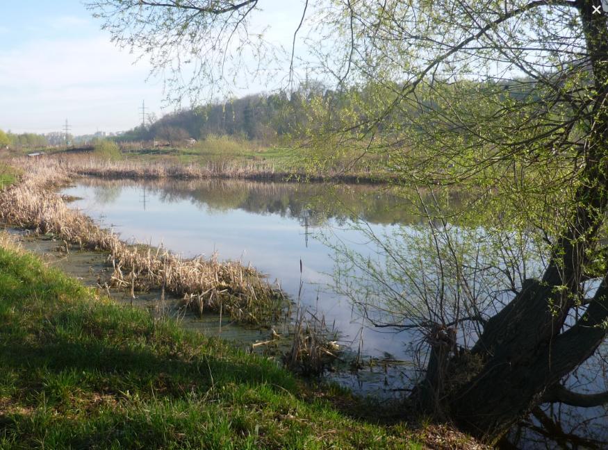 Озеро Святое с видом на Дзержинский