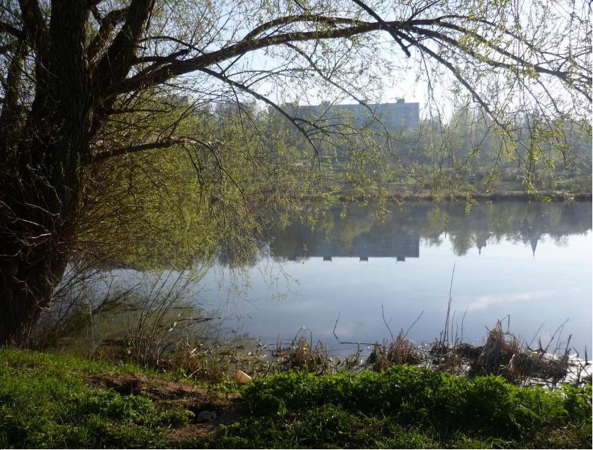 Озеро Святое с видом на Петровское