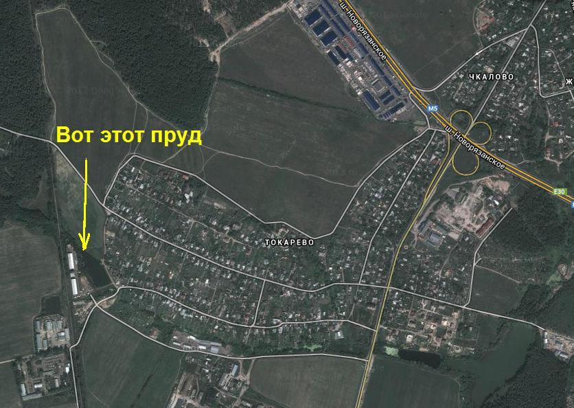 Пруд в Токарево