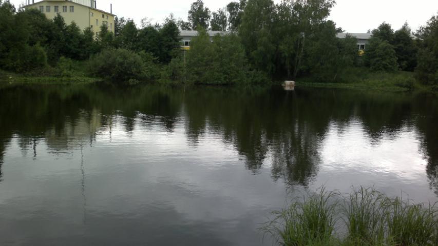 Пруд в Токарево. Вид на север